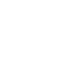 The Lady of the Cake
